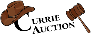 Currie Auction Service